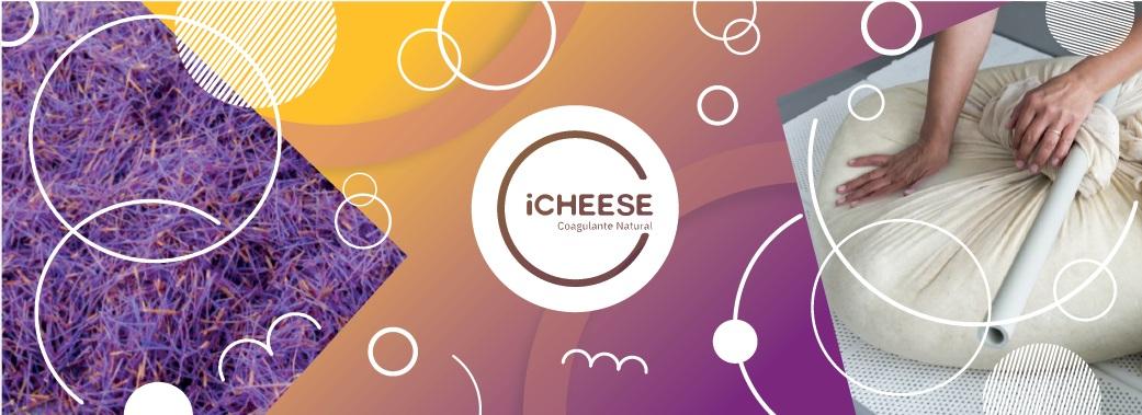 iCheese - Projeto